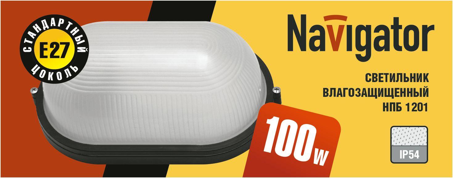 Светильник Navigator NBL-O1-100-E27 чёрный овальный открытый 94 813